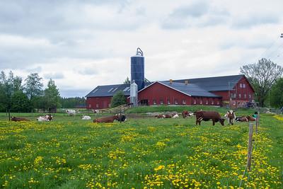 Hørsand gård