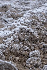 Pløgsle med frost