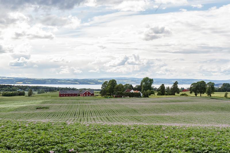 Hammerstad Gård