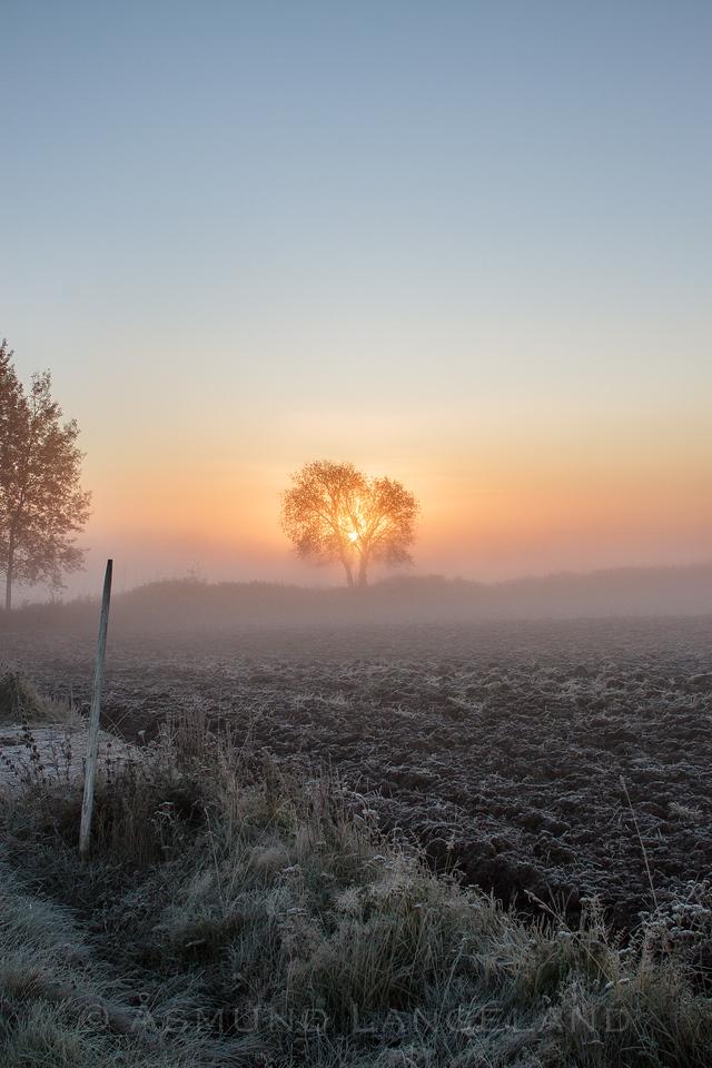 Høstmorgen på Stange