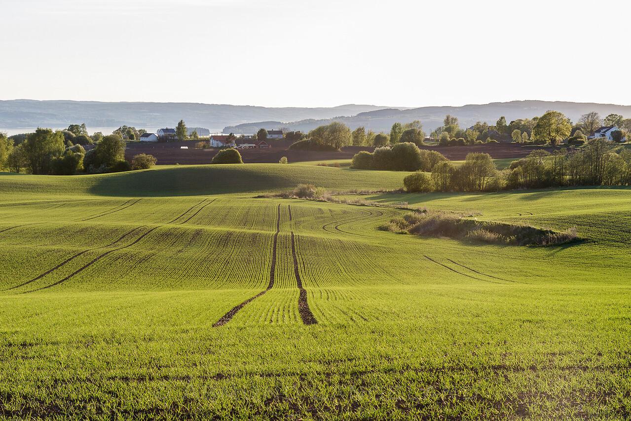 Kulturlandbskap på Stange Vestbygd
