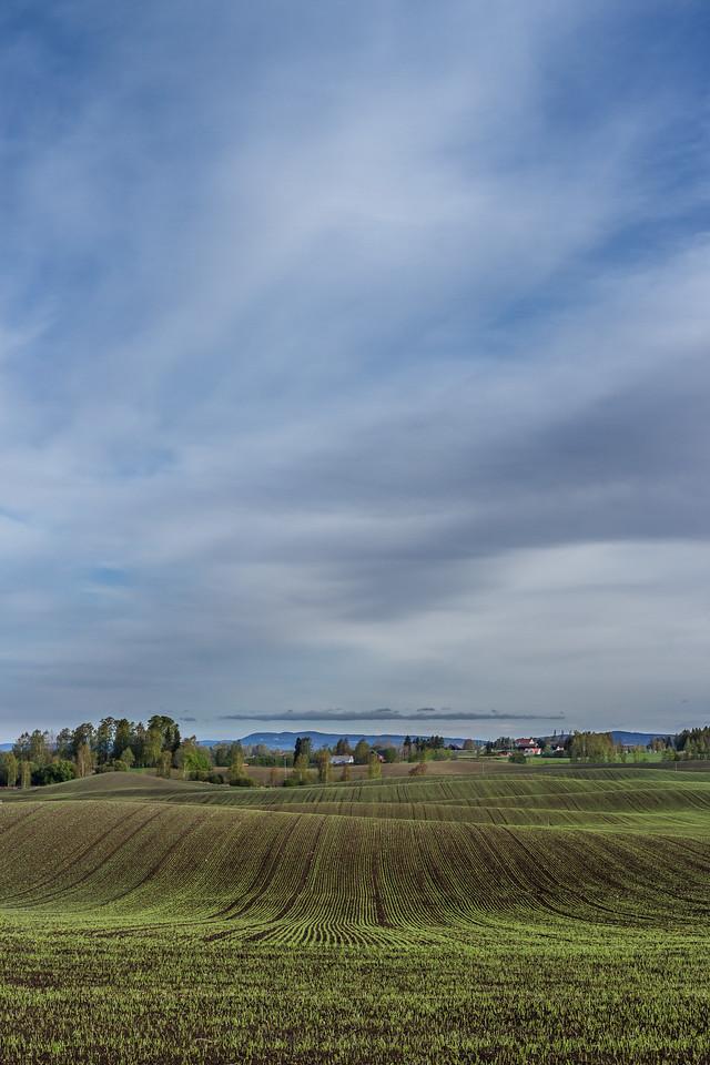 Kulturlandskap på Nesten gård