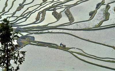 China beautiful landscape