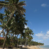 08.03.2013, Dominikanische Republik, Halbinsel Samana, Ort: Las Terrenas. Fischerboote und Palmen am Strand an der Ortsmitte.