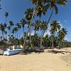 08.03.2013, Dominikanische Republik, Halbinsel Samana, Ort: Las Terrenas. Fischerboote und Palmen am Strand an der Ortsmitte. Vertikalpanorama