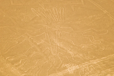 """Aerial view of the """"Tree"""" at the mysterious Nazca lines in the pampa plateau desert in Peru."""