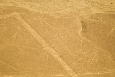 """Aerial view of the """"Whale"""" at the mysterious Nazca lines in the pampa plateau desert in Peru."""