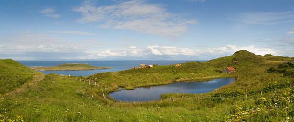 02.08.2011, Schottland, UK., Isle of Skye, Halbinsel Trotternish. An der Kuestenstrasse in der Naehe des Ortes -Duntulm- an der Nordspitze der Insel. Weidende Kuehe auf einer Wiese, im Vordergrund ein Tuempel, im Hintergrund das Meer. Panoramaaufnahme.
