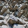 Landlines: Basalt Field   Mt Rainier National Park
