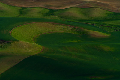 Landlines: Crop Beds| Palouse, Washington