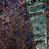 Organic / Inorganic:  Abstract No. 1 - Spring in New York City