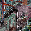 Nature and Human Nature, Abstract - Architecture of New York City