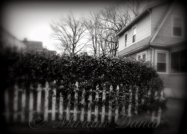 Old House with White Fence - The Suburbs of New York City