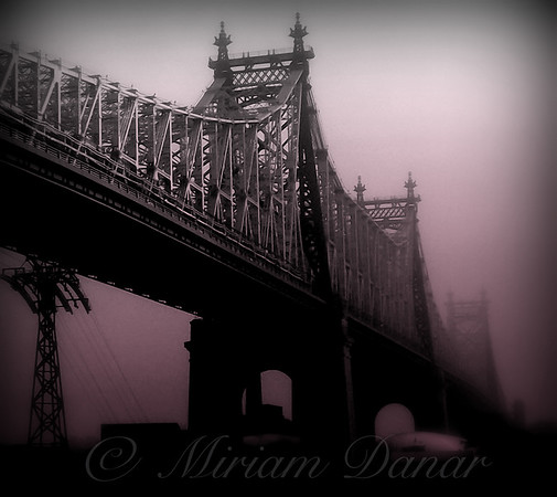 59th Street Bridge in Rose