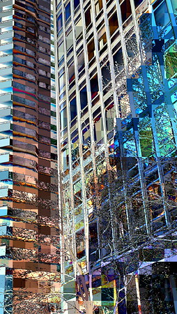 Organic Inorganic - Flowering Trees, Glass and Steel - Spring in New York City