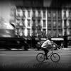 The Bicycle - New York City Street Scene
