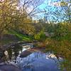 Central Park in Spring 1
