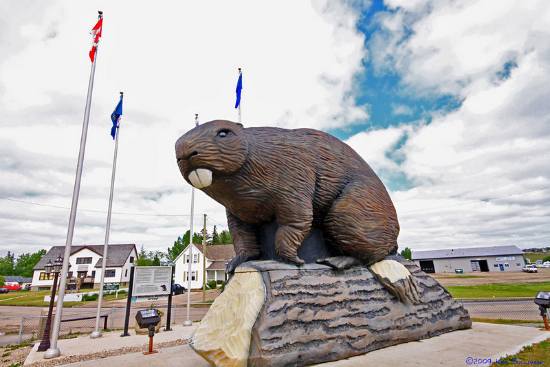 Giant Beaver!  Beaver Lodge, Alberta