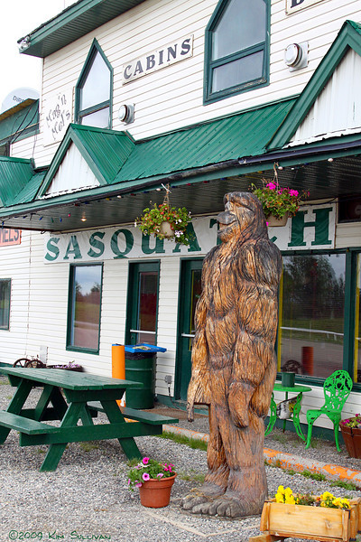 Sasquatch!  Seen along the Alaska highway, at Wonowon BC