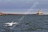 02-04-2012-Swan_Lighthouse-8841