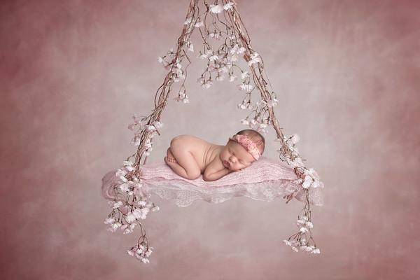 Landry • Newborn