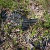 Abandoned silt fence<br /> 38.833905, -77.219771