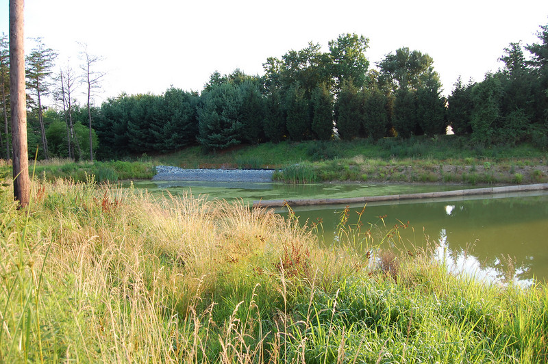 Stormwater pond
