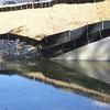 Weak spot in silt fence, but seeding above it looks good.  Southwest quadrant of I-495/Rt 236 Rd interchange. 13 Oct 2010