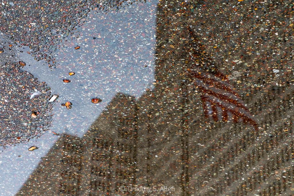 Reflective Flag and Trash