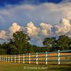 Running Fence