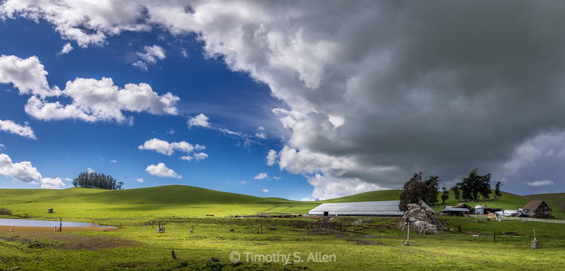 Unsettled Skies Over Green Pastures