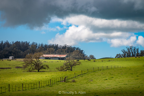 Another Unsettled Weather Above a Green Pasture