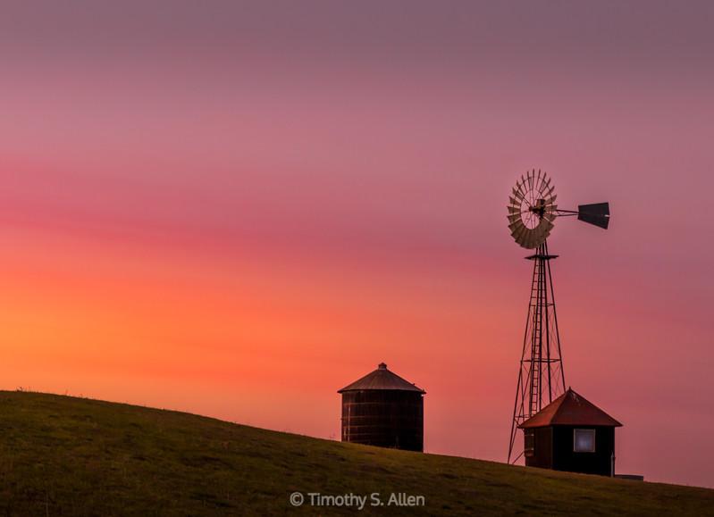 Scarlet Sunset