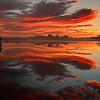 Sunrise at Blackwater NWR