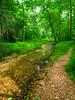 VanWinkle_Trail_26Jun2014_0053