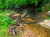 VanWinkle_Trail_26Jun2014_0047