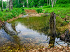 VanWinkle_Trail_26Jun2014_0021