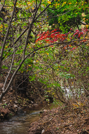 Roman_Nose_State_Park_27Oct2014_0040