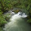 Rushing luscious waters