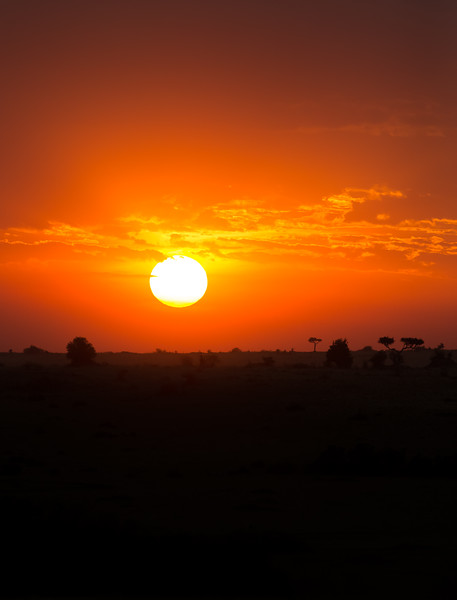 Sunset masai mara