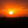 Sunset masai mara