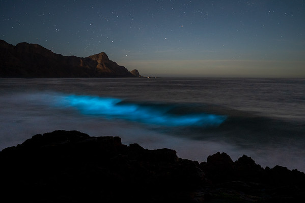 Blue wave, Kogel Bay, South Africa