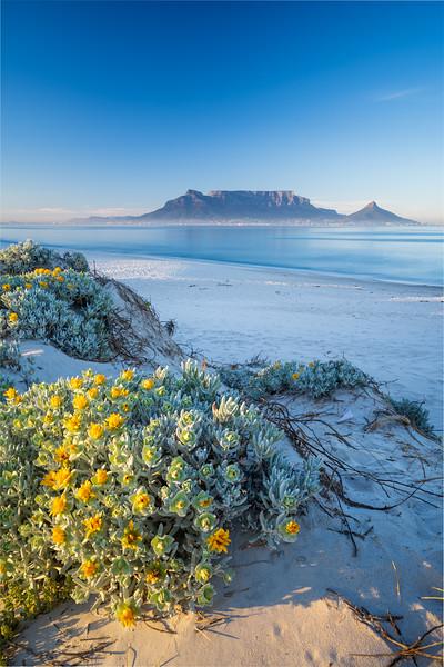 Spring sunrise, Dolphin Beach, Cape Town 2020