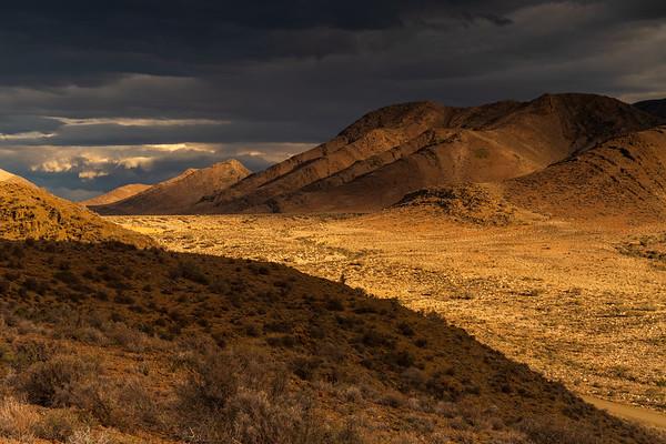 Dust of gold, Hope, Weltevreden Valley in the Karoo, Prince Albert, South Africa