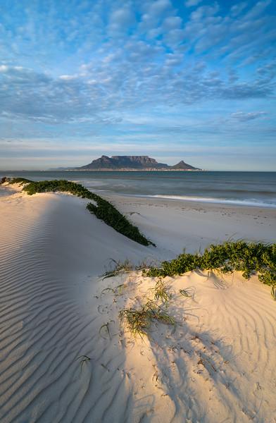 Dolphin Beach Dunes