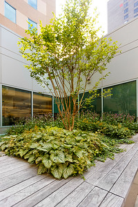 Recover-Green-Roofs-0030