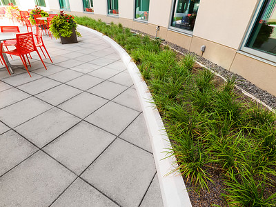 Recover-Green-Roofs-0024