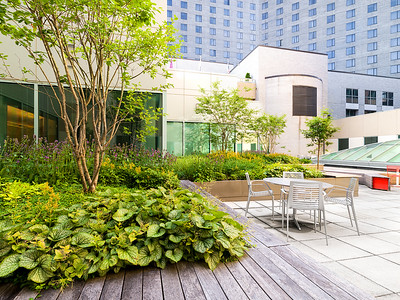 Recover-Green-Roofs-0010