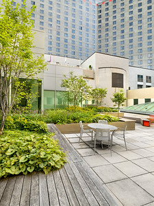 Recover-Green-Roofs-0008