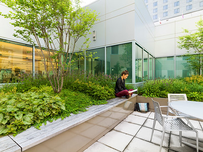 Recover-Green-Roofs-0020